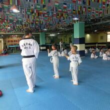 孩子学跆拳道到底学到了什么?