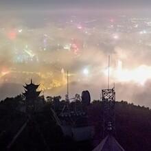 咸阳茶产业生态开发项目可行性报告图片