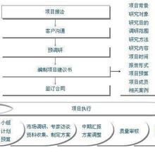 河南价格/能写可行报告可行性报告的正规公司图片