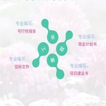 邵阳县代写可行性报告、邵阳县写项目建议书图片