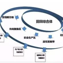 临武县项目可行性报告如何收费图片