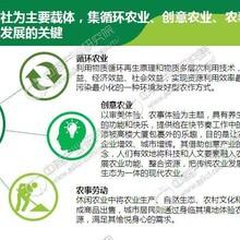 东阿县有经验写可行性报告的公司图片