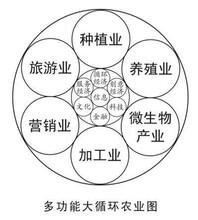 邵阳申请/办理进口设备免税项目可行性报告应该怎么写图片