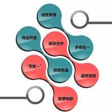 咸安编制可行性研究报告-咸安立项报告格式图片