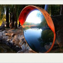 广州项目可行性报告如何收费图片