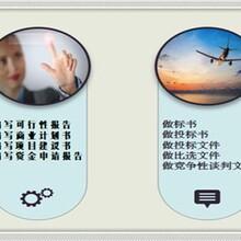 吉县可写项目建议书-价格公道图片