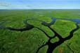 桃江县做生态农业项目