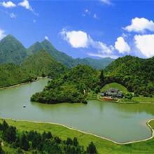 金秀瑶族自治县做900吨饮品项目可行性研究报告图片