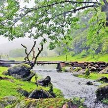 河南蒙古族自治县项目资金统筹方案会写图片