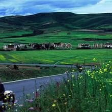 库伦旗做100吨豆制品项目商业策划书图片