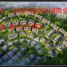 工布江达县撰写可行性报告收费多少-写正规可研报告图片
