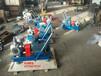 公主岭市齿轮泵-宏润YCB-25/0.6型不锈钢圆弧齿轮泵