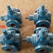 锡林浩特供应YCB-10型圆弧齿轮泵-产品质保图片