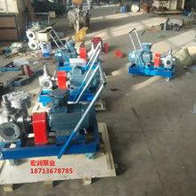 滕州产品-宏润供应YCB-12/0.6型不锈钢圆弧齿轮泵图片