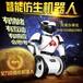 艾力克智能机器人河南郑州办事处总代理高科技儿童玩具批发零售招代理一件代发