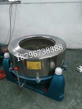 雄獅機械大量現貨豆渣甩干機固液分離設備小型工業脫水機熱銷圖片