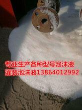 抗溶泡沫液S/AR6%抗溶性消防泡沫滅火劑圖片