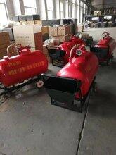 小型PY4/200半固定(轻便式)泡沫灭火装置图片