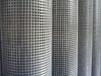 漳州养殖电焊网养殖铁丝网镀锌电焊网