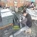青石板石材生产厂家