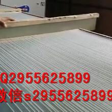 免凍不粘連粉條機天陽機械多功能涼粉機圖片