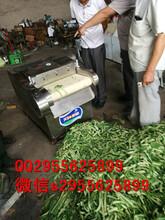 效率高切丝机速度快切丝机精细切丝切条机价格图片