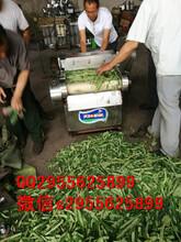 切丝机切条机价格切丝机切条机供应商图片