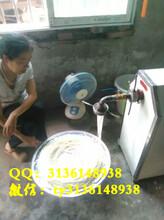 天阳电动酸浆米粉机工艺多功能河粉机技术榨粉机价格图片
