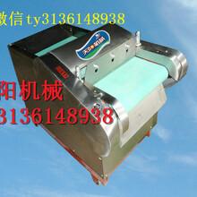 天阳电动切丝机价格可调速茶叶切丝机图片