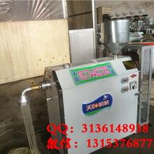 家庭用自熟粉条机工艺厂家直销漏粉机扁粉机价格图片