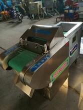 天阳仿手工电动切丝机价格烟草切丝机切条机技术指导图片