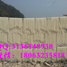 江西电动自熟酸浆粉干机多功能米线机榨粉机工艺图片