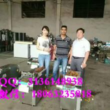 家用小型调速电动切丝机多功能切条机工艺价格低图片