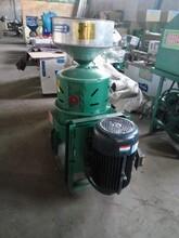天阳小型家用砂轮脱皮机新工艺一次成型谷子碾米机图片
