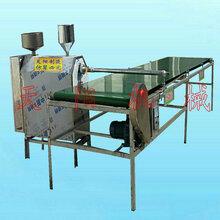全自动米粉机,免冻免搓洗米线机图片