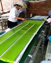 纯绿色烫皮机价格电热水煮自动控?#40065;?#23478;技术指导图片