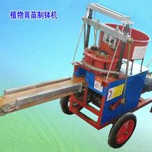 营养土打钵机操作简单出苗率高,蔬菜棉花育苗打钵机厂家图片