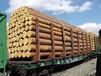 大量供应俄罗斯樟子松落叶松白松红松桦木杨木板材及原木