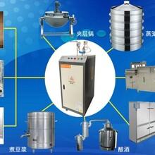 密云电蒸汽发生器48千瓦电蒸汽发生器食堂蒸煮专用