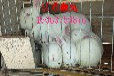 一只种兔多少钱哪里有大型种兔养殖场