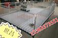 小猪床育肥仔猪床保育床国栏