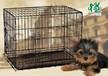 优质国内狗笼批发厂家世界名犬西藏獒犬