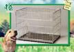 宠物笼厂家,爱犬人士养小狗后的心态