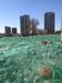 北京防尘网厂家盖土网批发价格