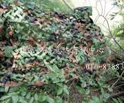 北京迷彩网厂家防航拍迷彩网哪里买图片