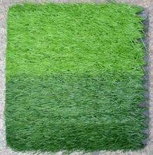 北京厂家供应无毒环保耐磨人造草坪图片