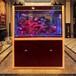 定做鱼缸专业鱼缸保养水族鱼缸上海鱼缸