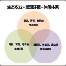 景县代做商业计划书的、写计划书投资人看图片