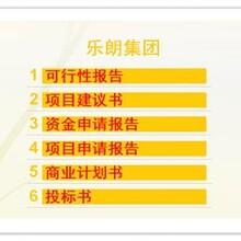 姜堰市代寫可行性報告公司寫項目申請報告圖片