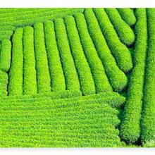 富陽市有寫可行性報告的公司富陽市編寫圖片